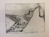 Drypoint workshop . West Yorks Print Workshop with Alan Birch.