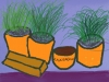 Plant pots and plants ( an early Patrick Caulfield )