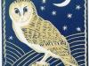 C-Murphy-Barn-Owl002