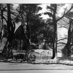 Inky  drypoint at Prospect Studio