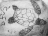 Turtle print with Alan Birch at Manchester Museum.